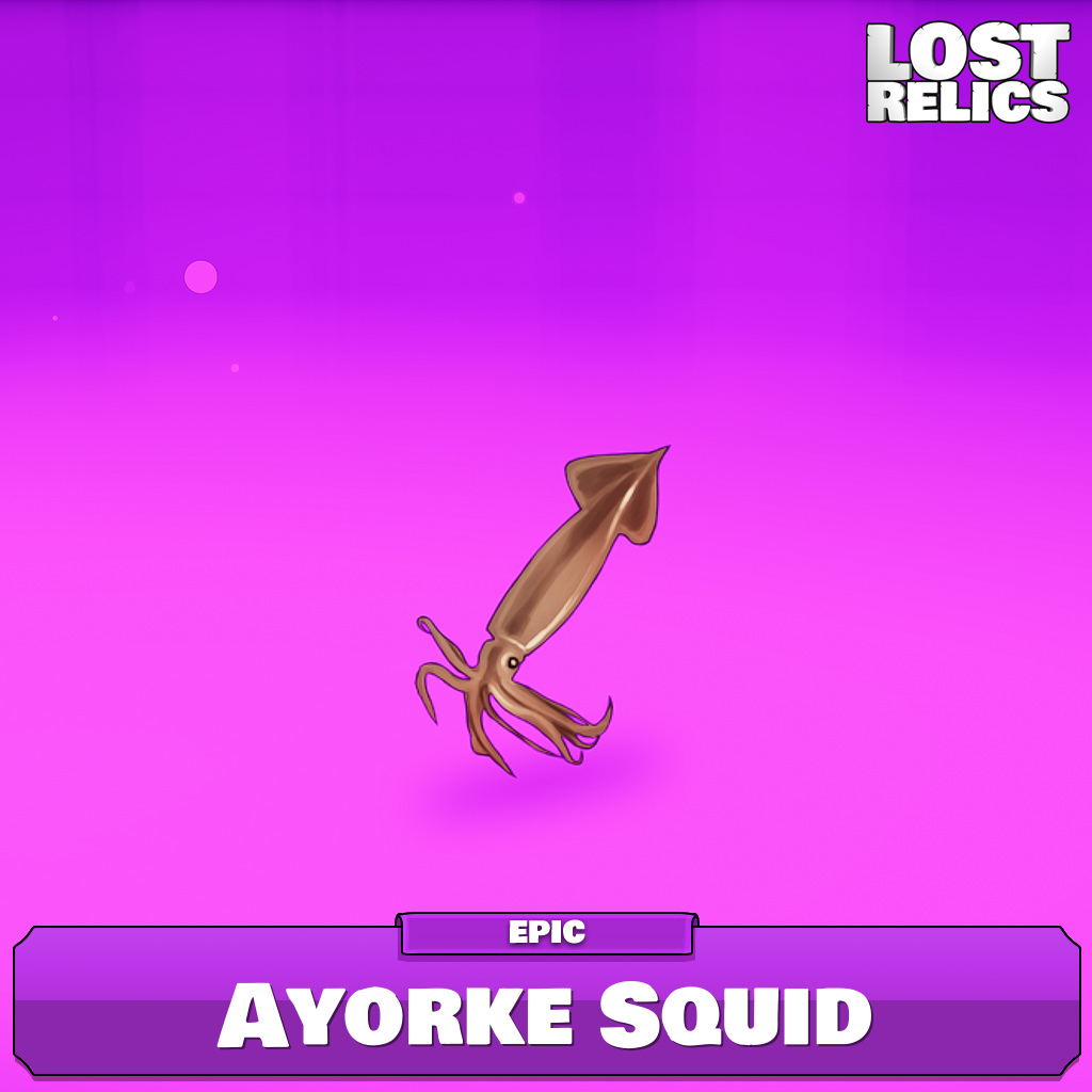Ayorke Squid Image
