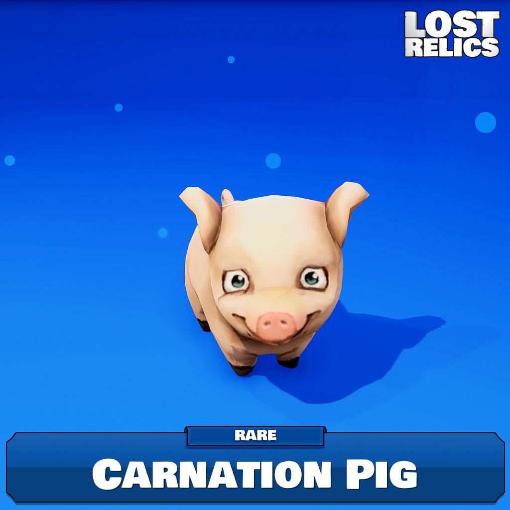 Carnation Pig Image