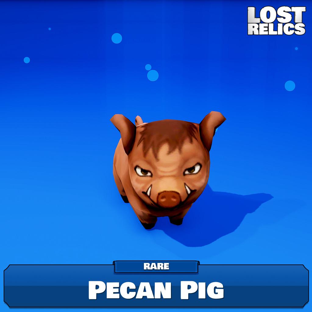 Pecan Pig Image