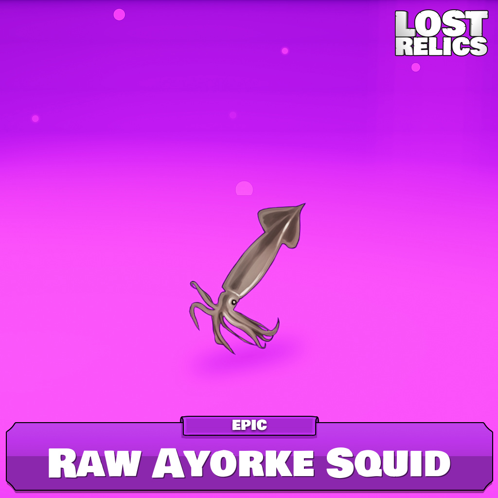 Raw Ayorke Squid Image