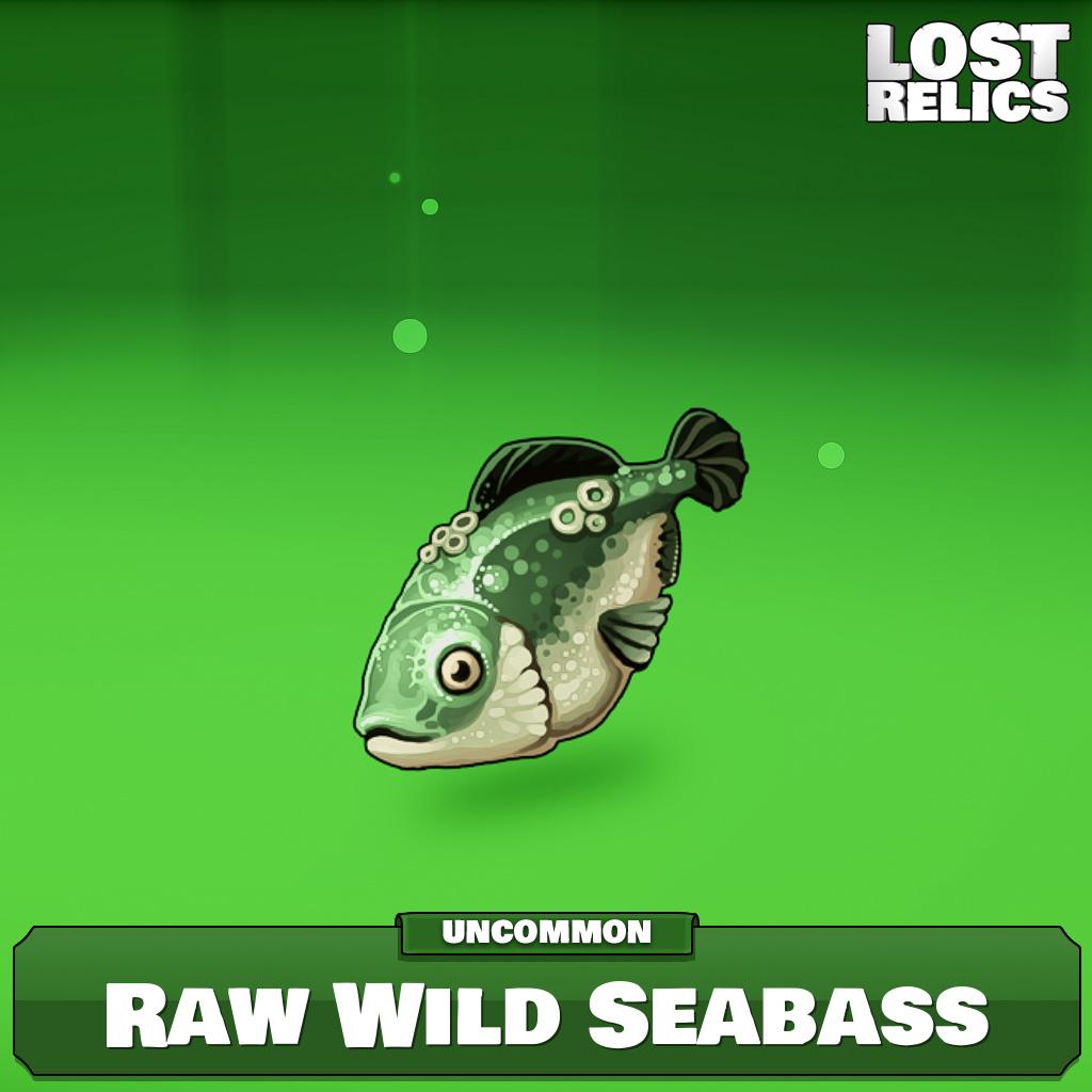 Raw Wild Seabass Image