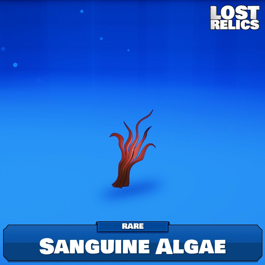 Sanguine Algae Image