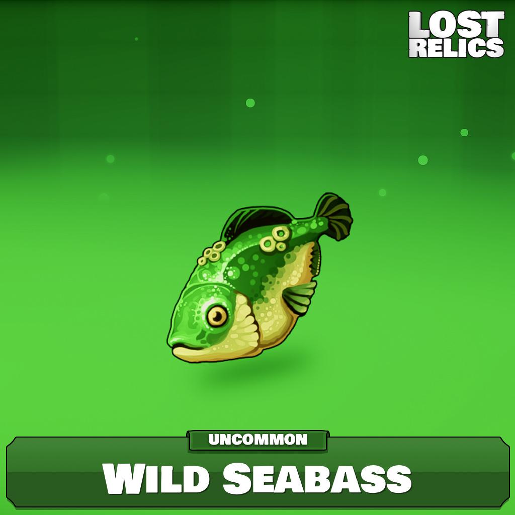 Wild Seabass Image